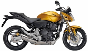 CB600F Hornet Yellow 2010