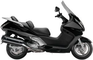 Silver Wing Black 2010